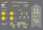 EY_FY13_infografika.jpg